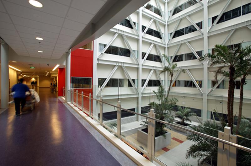 Auckland City Hospital (1)